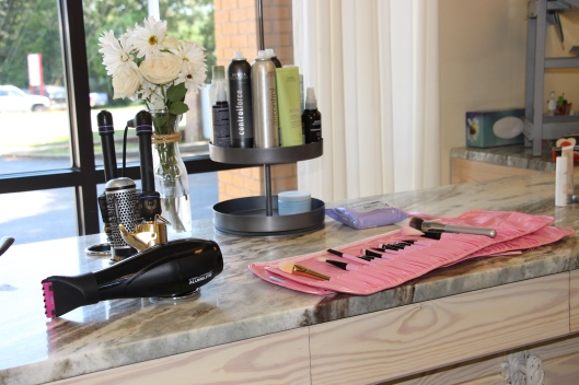 Alexa's brush kit. I want all of the brushes.